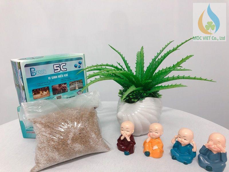 vi sinh hiếu khí BIOFIX 5C
